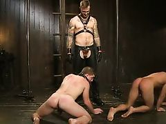 gay naughty asses need a lesson