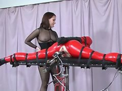 Sex Toy Porn Tubes