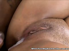 Cream Pie Porn Tubes
